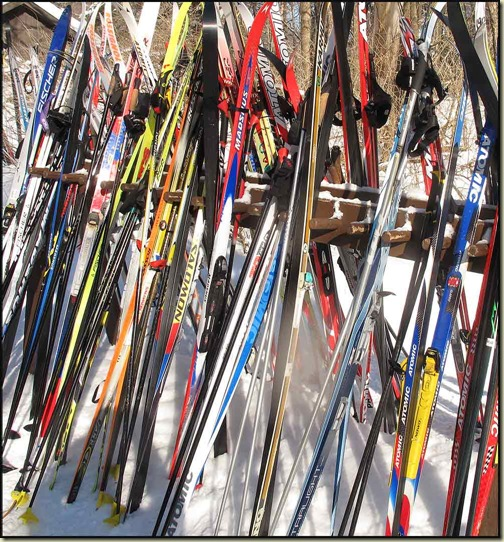 Skis outside Huron Cabin