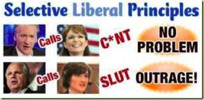 Maher-palin-liberal-hypocrisy