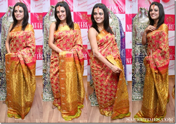 Tashu_Kaushik_Designer_Saree