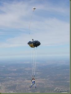 skydive 142