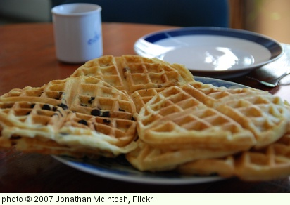 'Waffles' photo (c) 2007, Jonathan McIntosh - license: http://creativecommons.org/licenses/by-sa/2.0/