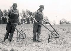 hand-plow-women-1919
