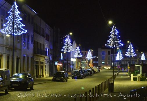 Glória Ishizaka - Luzes de  Natal - Águeda 37