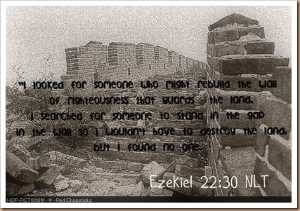 wall of china ruins - Copy