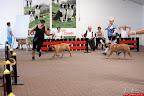 2012-05-26-BMCN-Clubmatch-s1D5250.jpg