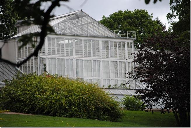 Botanisk have 2011 064
