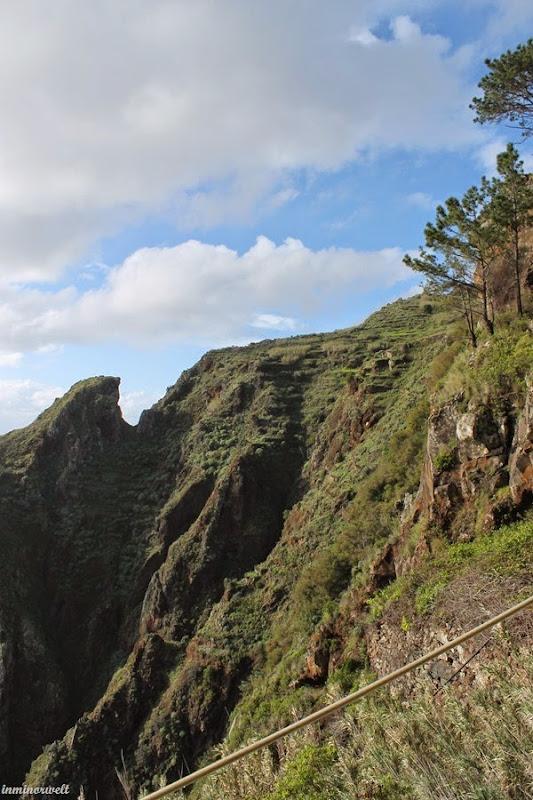 Madeira2014_15