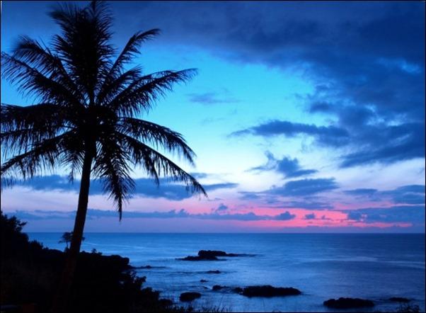 هاواي6