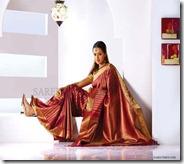 Bhavana_Bridal_Saree_Show (5)