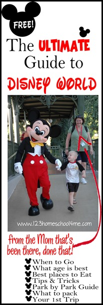 ultimate guide to disney world from a mom that's been there done that