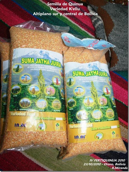 Semilla de Quinua Real variedad K'ellu - Rubén Miranda - Laquinua.blogspot.com