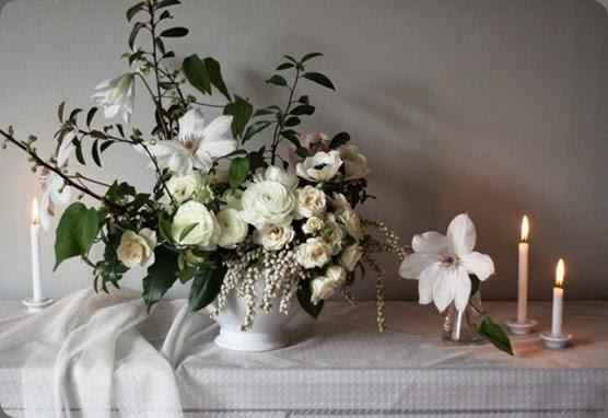 palepurpleflowers4 mckenzie powell