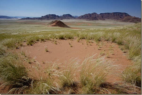 Mystérieux cercles de fées en Namibie (5)