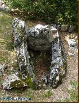 Dolmen del Portillo de Ollate - Navascués
