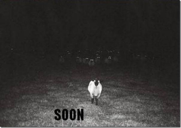 Em breve, muito em breve (16)