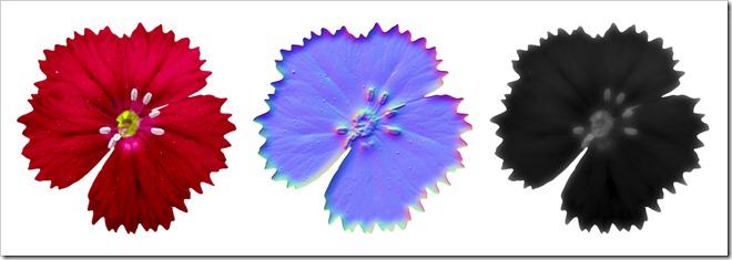 Flower_texture
