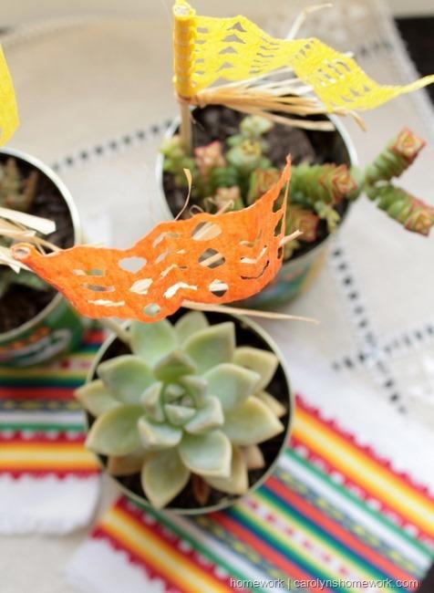 Cinco de Mayo Succulent Cans via homework  | carolynshomework.com