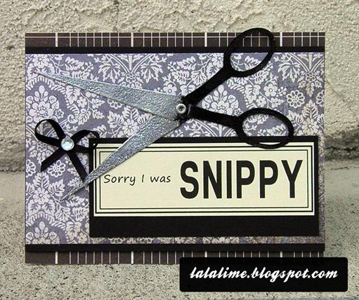 Get-Snippy_Barb-Derksen---prev2