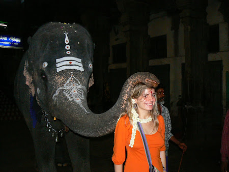 Elephant blessing in Hindu temple of Tamil Nadu