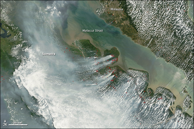 Dense smoke cloaks central Sumatra, Indonesia, in this image taken by the Moderate Resolution Imaging Spectroradiometer (MODIS) on NASA's Terra and Aqua satellites on 28 February 2014. The smoke is coming from fires in Riau province, where palm oil and pulpwood plantations are abundant. Though illegal for all but small landowners, fire is frequently used to clear brush and trees for farming, especially plantations. Photo: Jeff Schmaltz / NASA GSFC