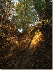Broekom: deze holle weg voert ons van de Watermolenstraat naar de Romeinse Kassei