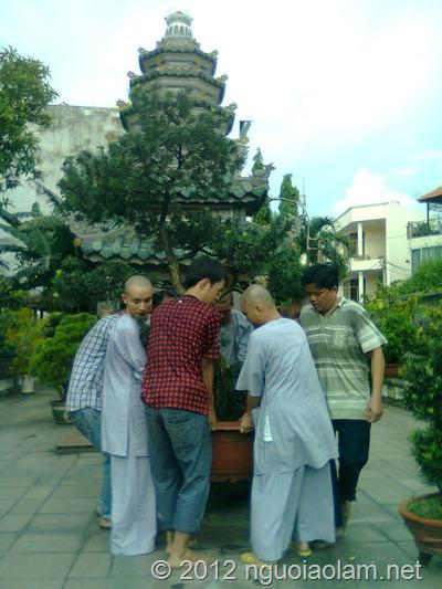 tang lễ hòa thượng Thích Minh Châu - 39