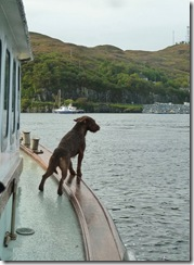eilean aboard