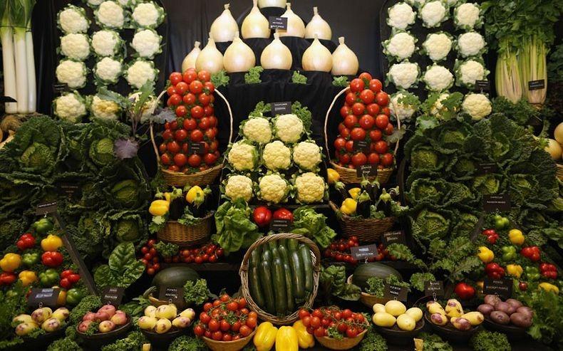 giant-vegetables-4