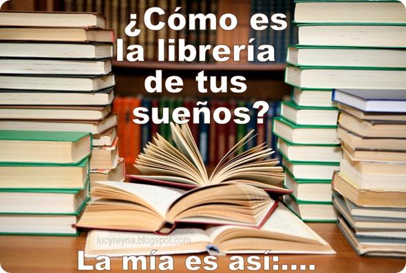 la libreria de mis sueños