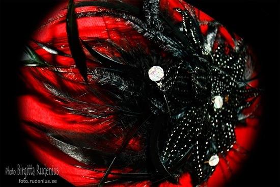 br_20111005_smycke