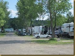 2011-7-4 carols campsite ontario canada (8) (800x600)