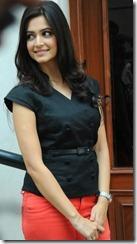Actress Kriti Kharbanda at Ongole Githa Movie Press Meet Stills