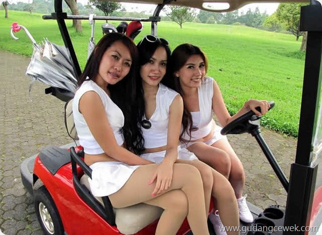 Kedi Golf Seksi Bikin Betah Main Golf || gudangcewek.com