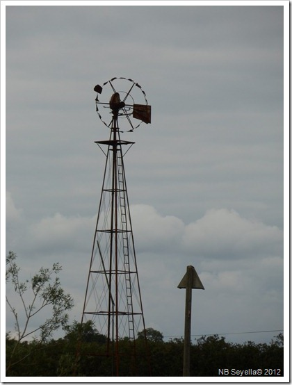 SAM_1574 Wind pump
