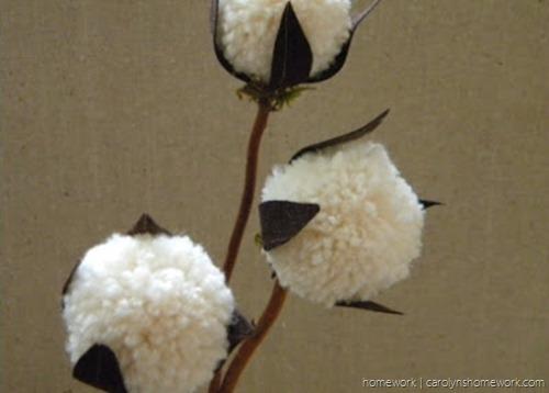 Cotton Balls 1