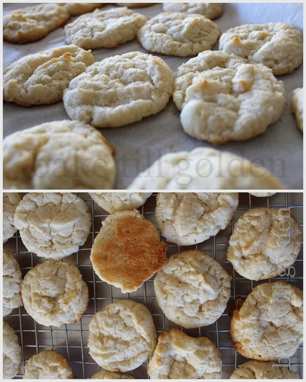Lemon Cookies with Basil White Choco - BTG-012