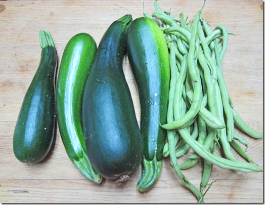 Dunja zucchini and Fortex pole beans