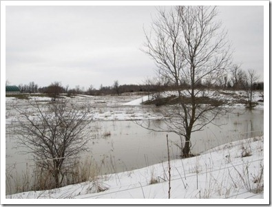 20120308_flood_007