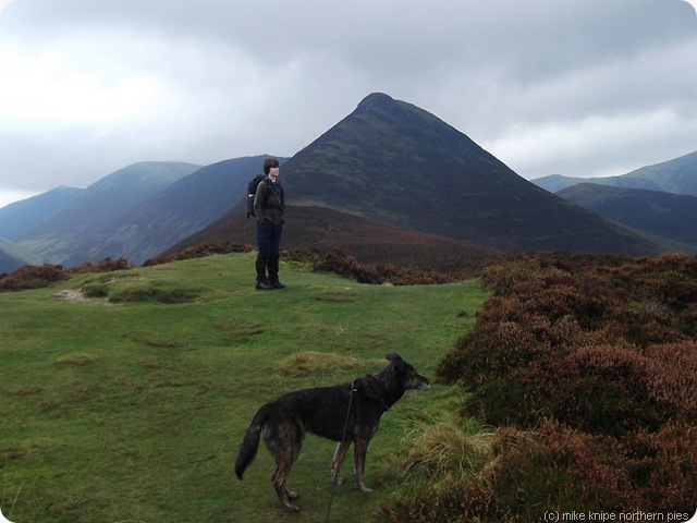 henry, superdawg and causey pike
