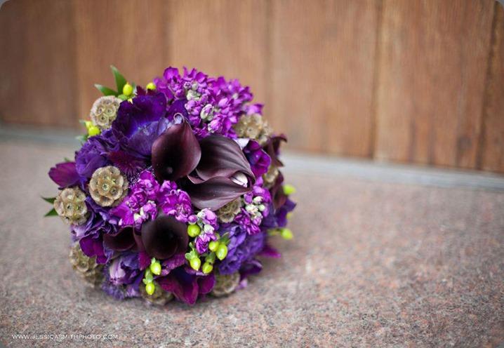 6719_10151561468533413_253598167_n la petite fleur