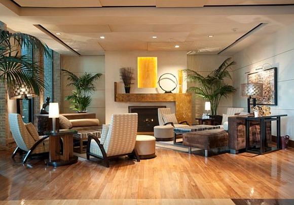 Elegantes plantas de la casa de interior para la sala de estar
