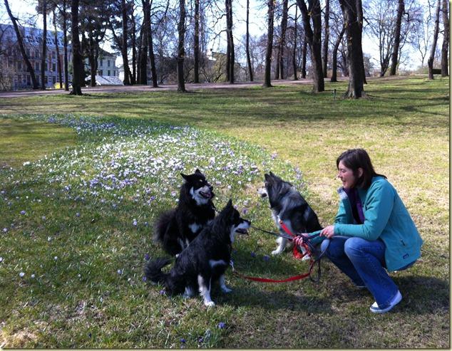 120414 Hundetur  Slottsparken