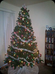 12-10-2011 our tree