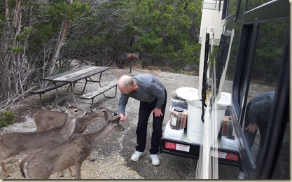 Dick feeding deer Medina Lake TT (2)