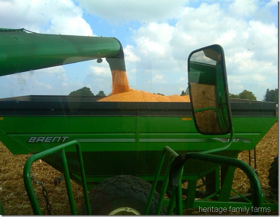 auger from combine