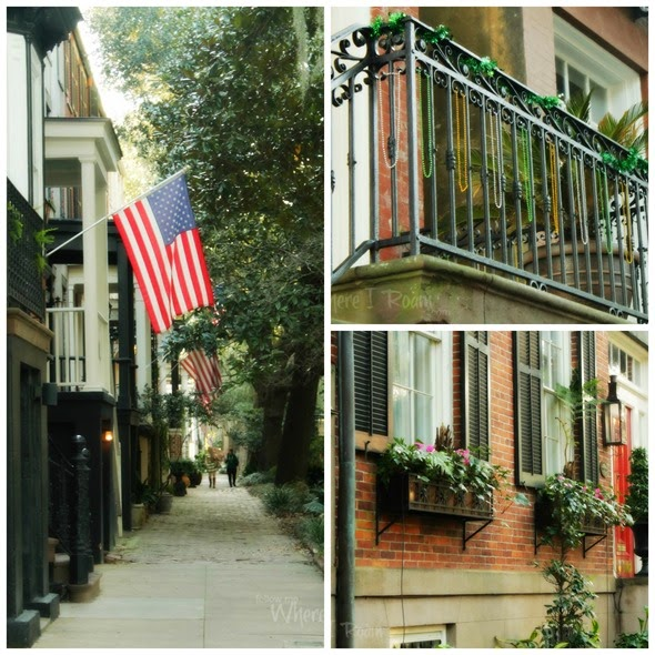 Savannah scenes collage 1