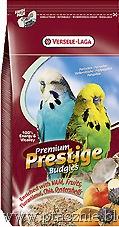 [_vyrn_149Prestige-Premium-Budgies%255B10%255D.jpg]