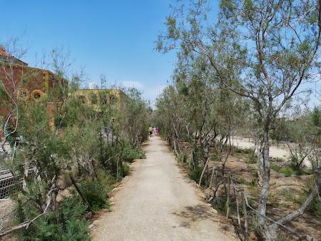 Locul botezului lui Isus Hristos: Spre locul Botezului