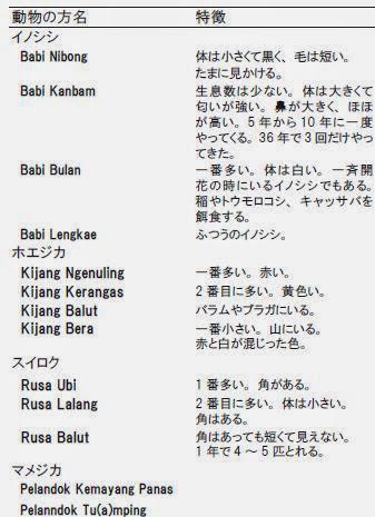 表1:Rh. Mawangの人たちが認識する動物の種類