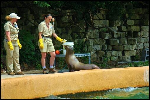 Zoo4 394